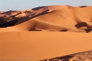 Reves-et-nature_Dune_6_Web